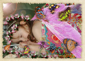 Butterfly Lullaby Storybook image